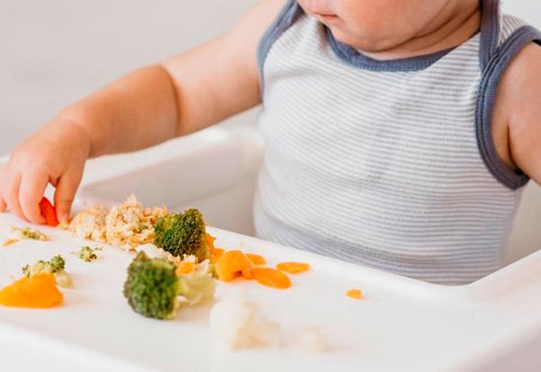 Curso Experto en Nutrición Infantil INN Formación